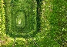 The Tunnel of Love, Ukraina