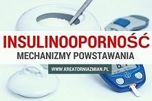 Insulinooporność - jak powstaje?