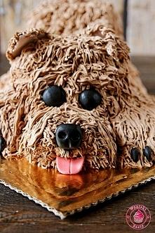 Czekoladowy tort Piesek - Wypieki Beaty