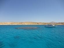 Wyspa Tiran (Egipt)