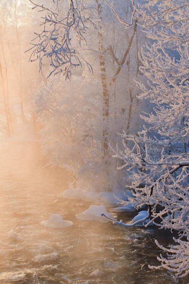 Zima | Śnieg