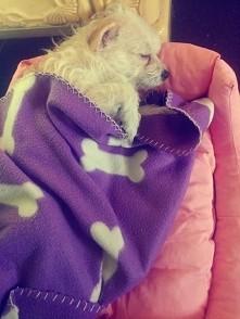 A malutka śpi i śpi :))