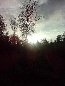 słońce nad ranem ❤