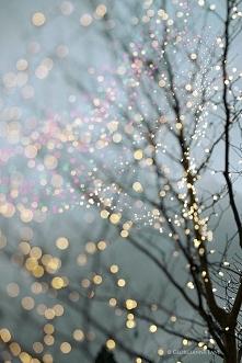 Światełka | Boże Narodzenie