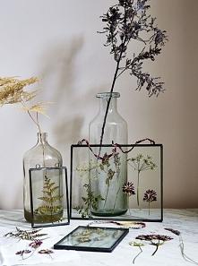 Suszone kwiaty w szklanej r...
