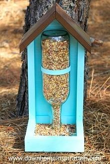 pomóżmy ptakom przetrwać zi...