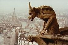 Gargulec -  Notre Dame