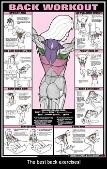 ćwiczenia pleców 3 serie po 15 powtórzeń