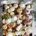 Sprawdzone przepisy na drobne świąteczne ciasteczka po kliknięciu w zdjęcie na mysweetworld.pl