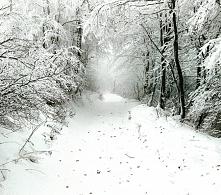 Na naszym Instagramie (klik w zszywkę) zagościła już prawdziwa zima ♡♡♡