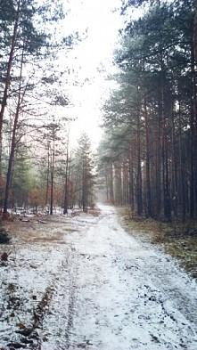 Pierwszy dzień zimy i małe ...