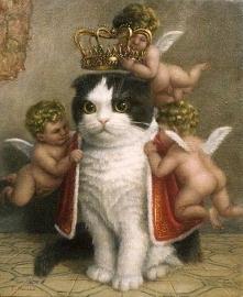 Kot - Pan i władca :D