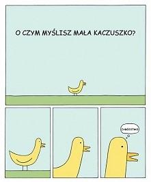 """""""Nigdy nie ufaj kaczkom"""" Will Herondal"""