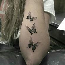 Motylki :-)