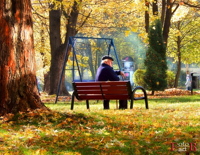 Seniorzy. Czy bycie seniorem oznacza samotność?