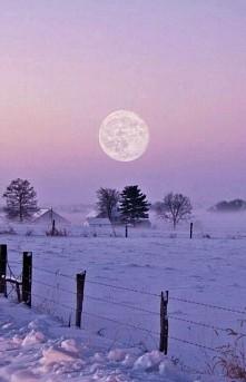 piekna zima :)