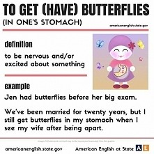 to get (have) butterflies