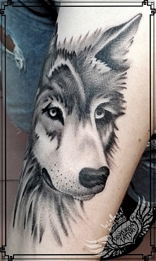 Wilk tatuaż