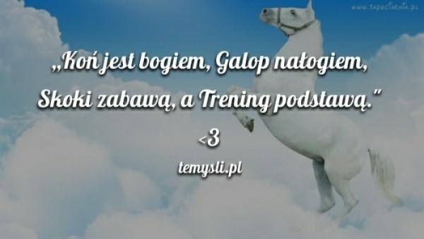 cytaty o koniach Piękny cytacik o koniu, a raczej wierszyk   rymowanka. na Cytaty o  cytaty o koniach