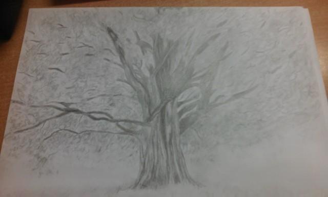 Drzewo. Jak oceniacie?