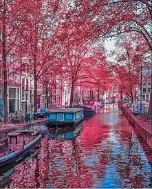 Amsterdam - Holandia :)
