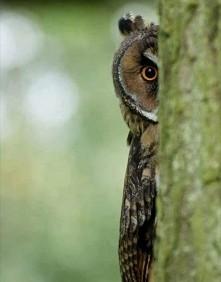 I see u! :)