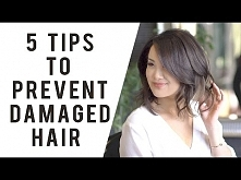 5 Professional Tips to Prevent Hair Damage   ANN LE