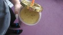 dzien 7! jogurt ktory sama zrobilam, kiwi,jablko i pomarańcza + pitny jogurt ...