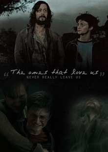 Harry Potter is life.