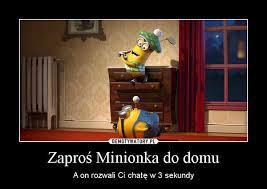 co się stanie kiedy wpuścicie Minionki do domu #dom #minionki #śmieszne