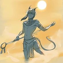 Egipski Kot