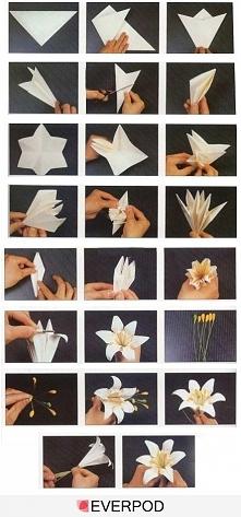 Śliczne kwiatki