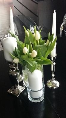 moje ulubione tulipany...