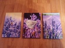 Trzy razy 16x25cm na płótnie canvas. 15 modeli do wyboru z których możesz skompletować swój własny tryptyk pisząc na rakbis.biuro@gmail.com