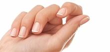jak zbudowane są nasze paznokcie ?