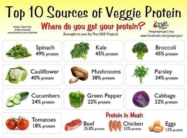 """""""Weganizm? Przecież białko znajduje się tylko w mięsie!"""" Jak widać nie tylko. Tutaj tak jak z żelazem - nie jest aż tak dobrze przyswajalne jak to z mięsa, ale znowu wiele roślin zawiera go o wiele więcej, więc nie ma się co martwić o źle zbilansowaną dietę. Białko w dużej ilości znajduje się również w soi, ciecierzycy, oraz soczewicy. Mimo, że konto założyłam dopiero wczoraj, już pojawił się lekki odzew, zatem mam do was małą prośbę: jeśli chcecie, żebym poruszyła jakiś konkretny temat, który was interesuje, napiszcie w komentarzu, chętnie podejmę się napisania czegoś konkretnie pod wasze potrzeby. :)"""