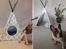 dog model  TIPI PLANET
