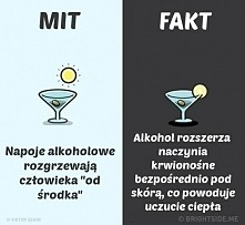 Mit czy Fakt?