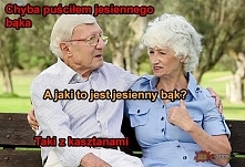 kasztany hahaha !!!