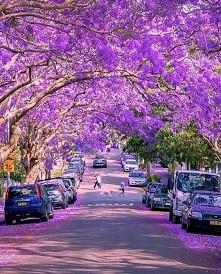 """Sydney,Australia """"Niewiarygodne miejsca na Ziemi"""""""