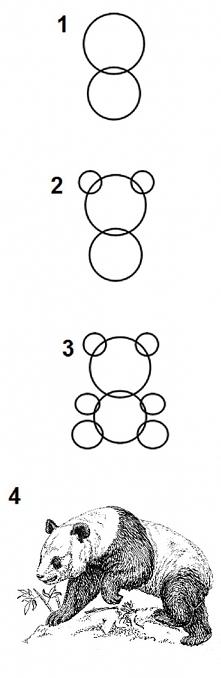 Jak narysować pandę   ;D ;D