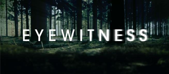 Eyewitness (2016)  Serial opowiada o dwóch chłopcach, Lukasie Waldenbecku i Philipie Shea, którzy są świadkami strzelaniny na przedmieściach swojego miasteczka. Od tej pory ich życie się zmienia: obawiają się, że zabójca ich odnajdzie. Jednocześnie decydują się nikomu nie mówić o zagrożeniu.