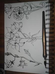 mój nowy rysunek