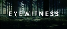 Eyewitness (2016)  Serial o...