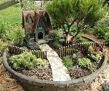 Mini ogród w doniczce *-* prosty w zrobieniu, efektowny!