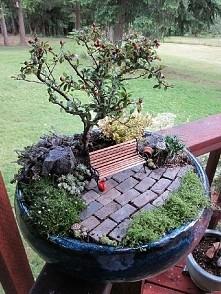 Kolejna inspiracja mini ogrodu w doniczce! Świetna jest ta ławeczka :3