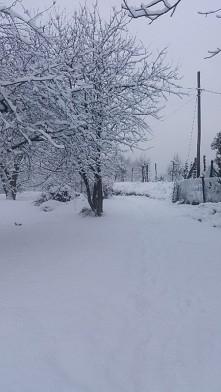Beutiful winter *-*
