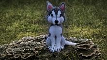 Piesek Husky z wełny czesankowej :D