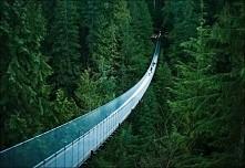 Capilano Suspension Bridge,...
