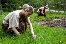 Jak zrobić ekologiczne pest...